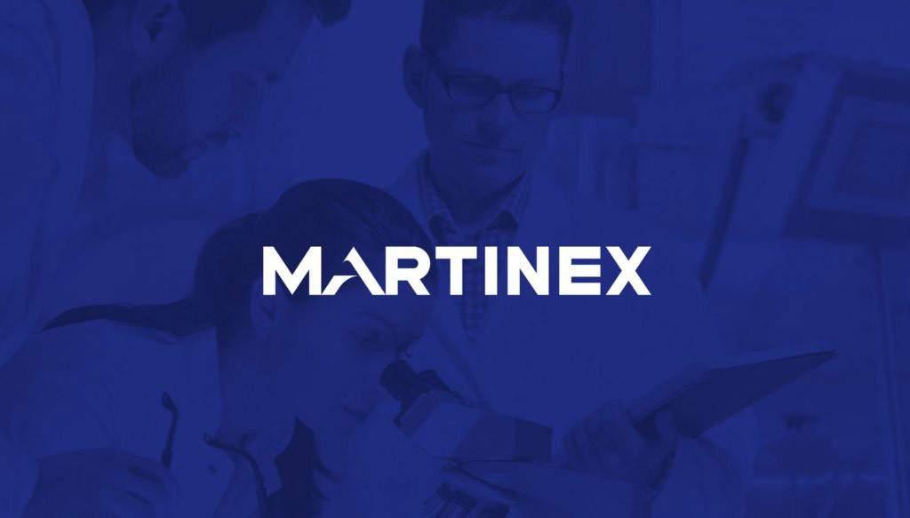 Разработка брендбука для группы компаний Martinex