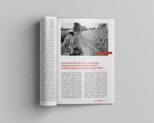 magazine2 portfolio