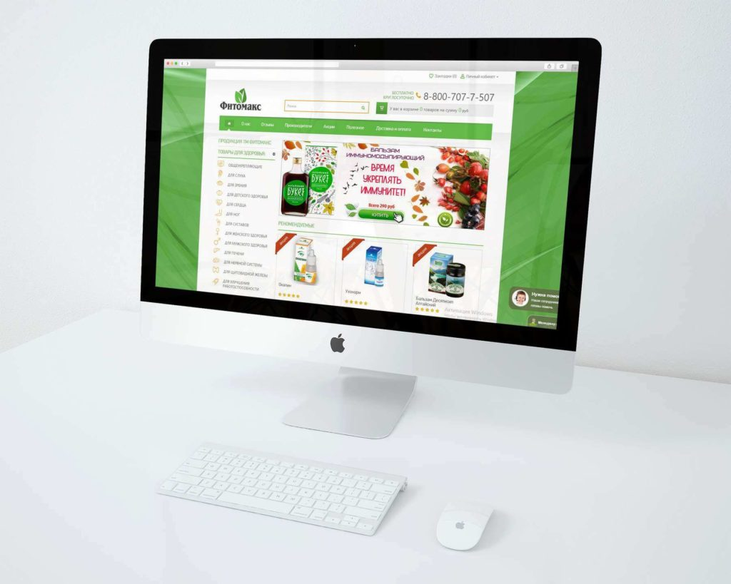 Online shop website development