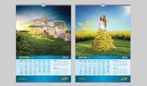 dekalb_calendar_3 портфолио