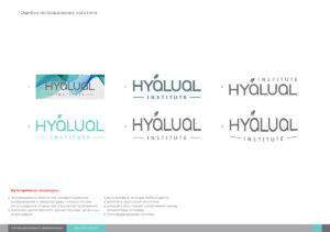 hyalual_brandbook_rus_new_small-6 портфолио