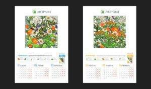 liktravy_calendar_2 портфолио