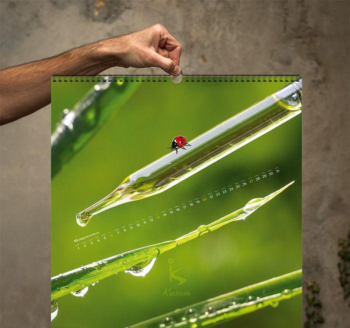 Wall calendar idea and design portfolio